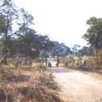 Some of A1 platoon outside of Chief ChikaLumpa Campaign 1964